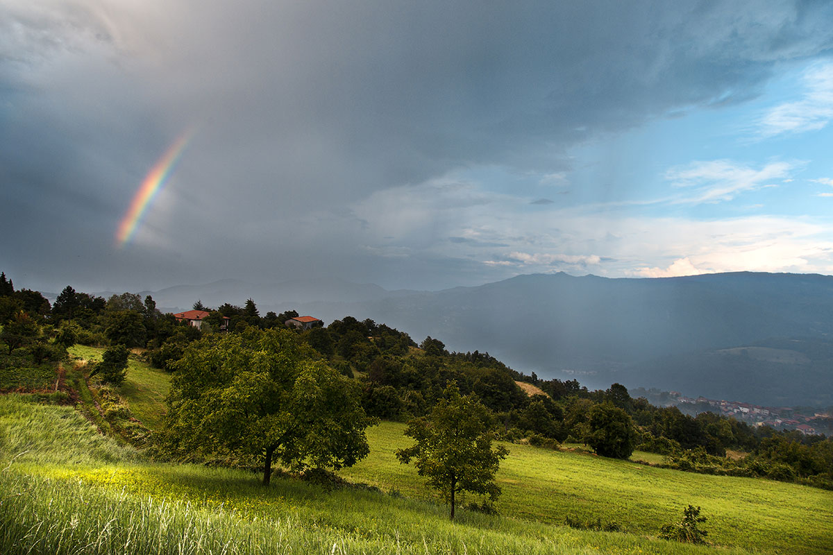 Paesaggio Val Tidone