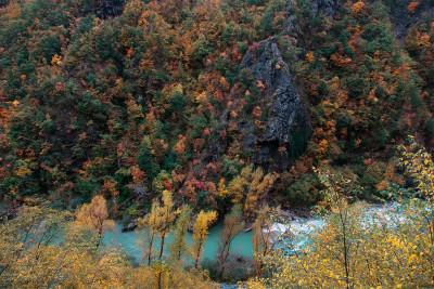 I colori dell'autunno sull'Aveto