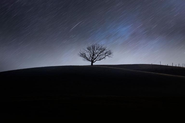Valle Staffora stellata