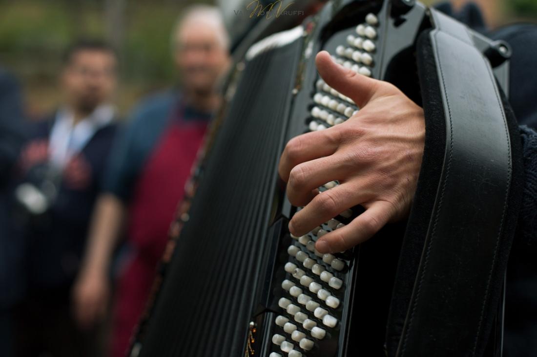 I suoni delle quattro province - La fisarmonica
